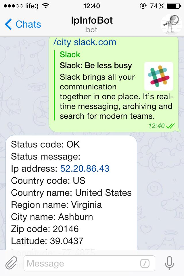 Telegram bot can find information about site