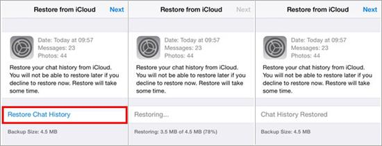 Recover iPhone WhatsApp Chat History from iCloud