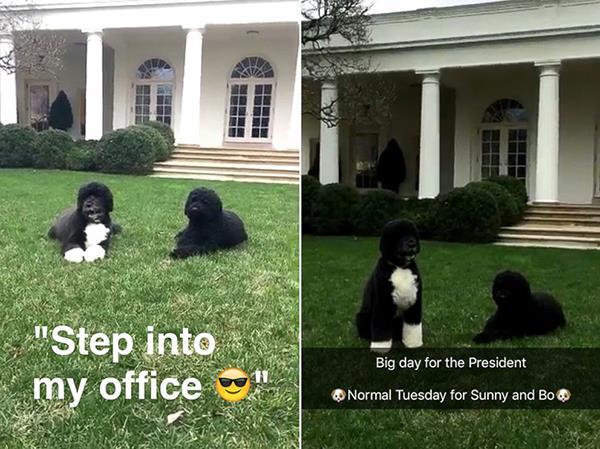 white house on snapchat