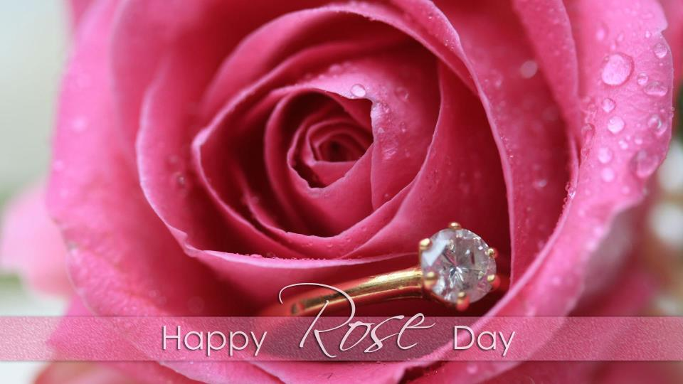 Rose day Whatsapp status & messages for whatsapp and Facebook