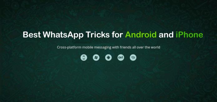 whatsapp-tricks-android-iphone