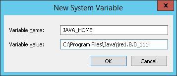 new-system-var-java-home