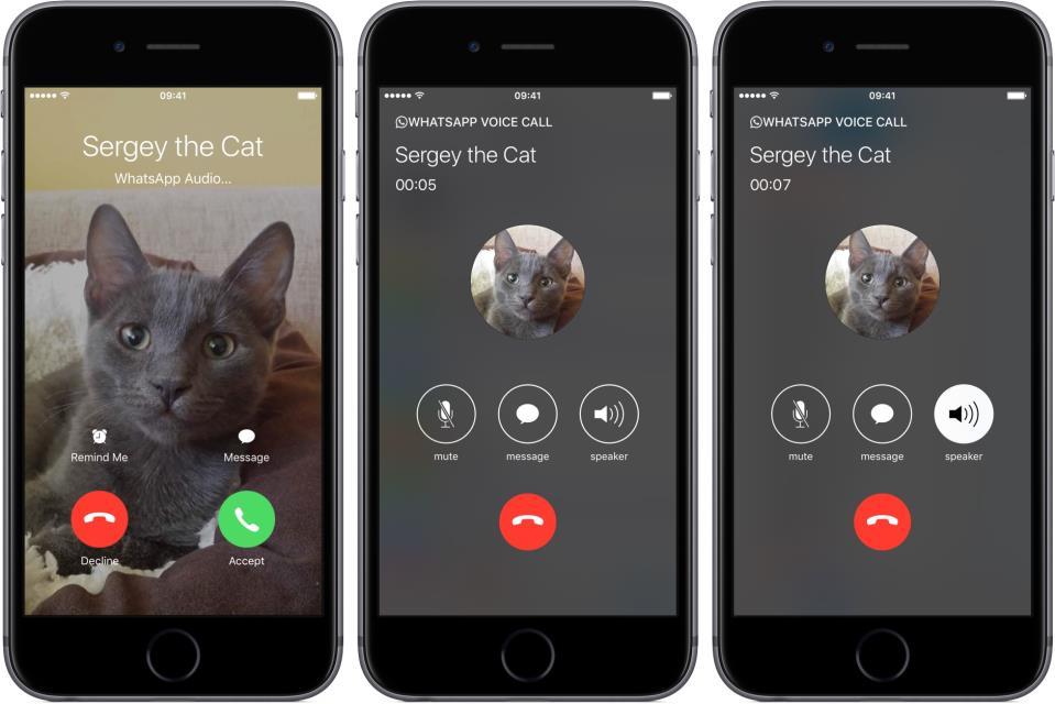 whatsapp-2-16-for-ios-phone-integration-iphone-screenshot-002