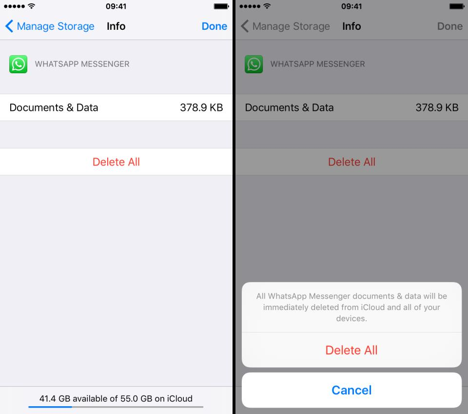 Delete app documents data ios