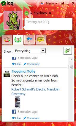 Facebook Feed on ICQ with Customized Skin
