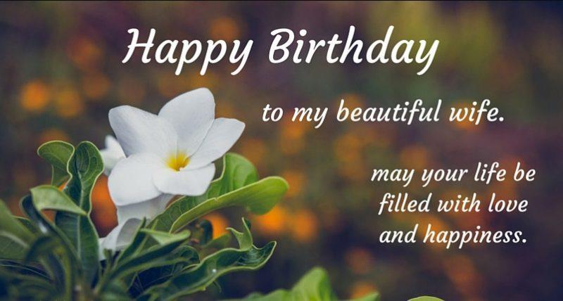 wish you happy birthday wife