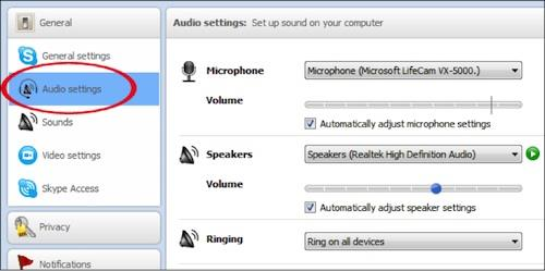 Skype Audio Problems