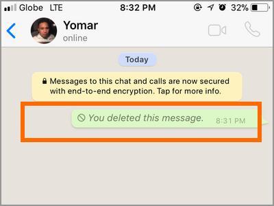 iPhone Whatsapp Delete Success