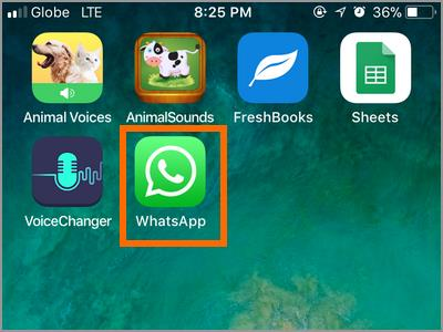 iPhone Whatsapp icon