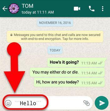 change font in whatsapp - FixedSys