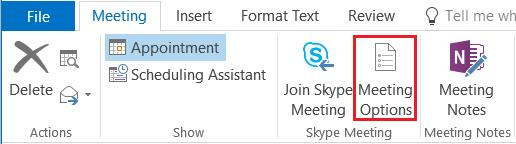 Skype Meeting Options.png