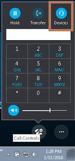 Skype Call Controls