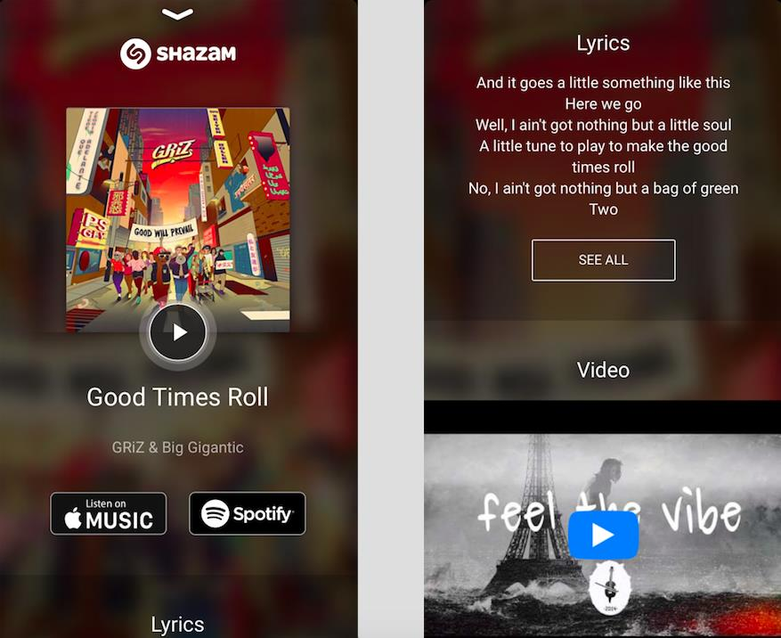 Listen to the songs and see lyrics all within the app.