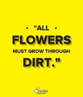 cute status quote 34