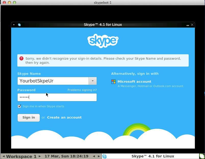 _images/skype-login.png