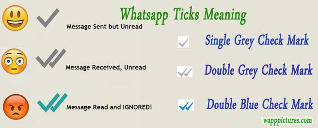 Whatsapp-ticks-meaning