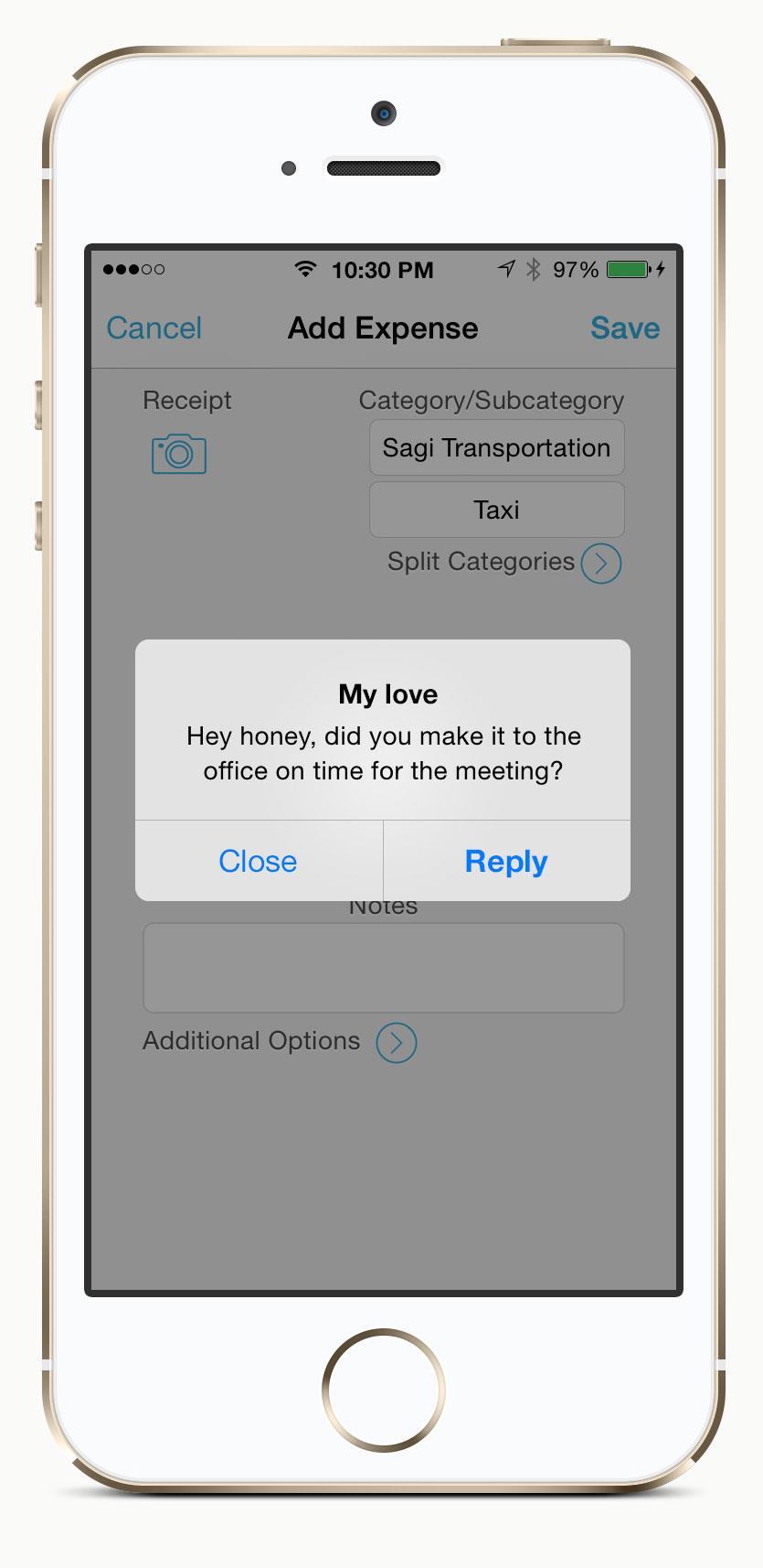 Regular Alerts popups in iOS7