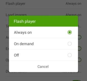 Turn Flash Player to Always On