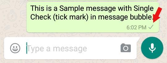 sample whatsapp message with single tick mark in message bubble