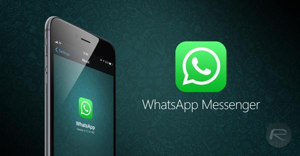 WhatsApp Messenger beta main
